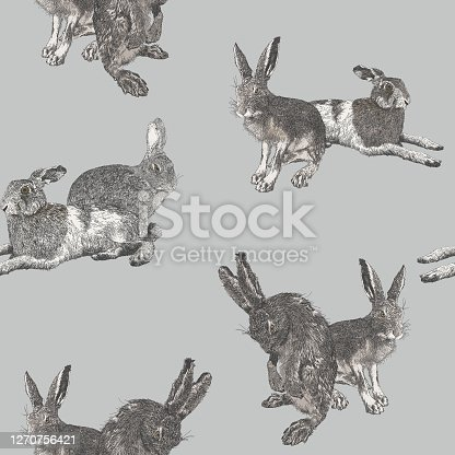 istock Hare and Rabbit in groups seamless repeat 1270756421