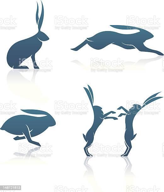 Hare icons vector id148721813?b=1&k=6&m=148721813&s=612x612&h=qdfivfbndrbi   0pr8qc3lllt3i0pxtbpqohluboqi=