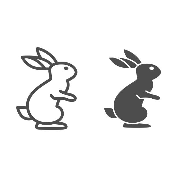 Hare line and solid icon, wild animal concept, rabbit on back paws sign on white background, cute bunny from forest icon in outline style for web design. Vector graphics. Hare line and solid icon, wild animal concept, rabbit on back paws sign on white background, cute bunny from forest icon in outline style for web design. Vector graphics abstract clipart stock illustrations