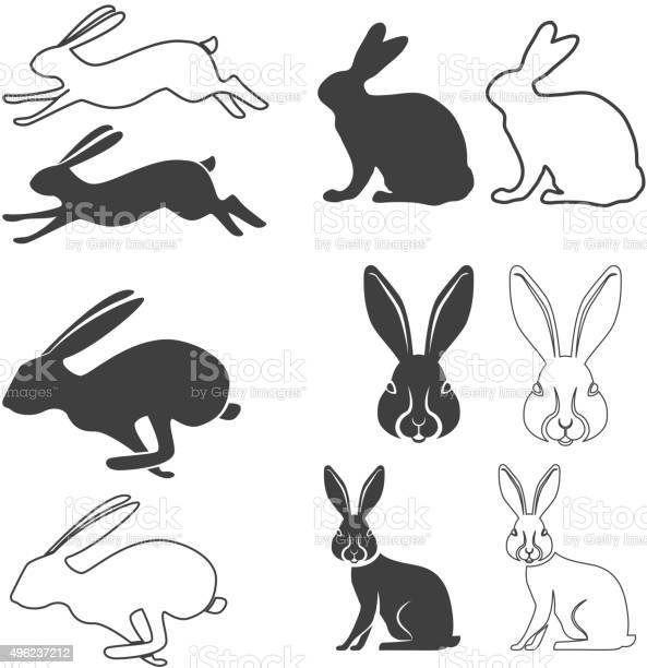 Hare vector id496237212?b=1&k=6&m=496237212&s=612x612&h=tnun6ofishywqnxuei78bnpgf25jydo3ujycs7irhha=