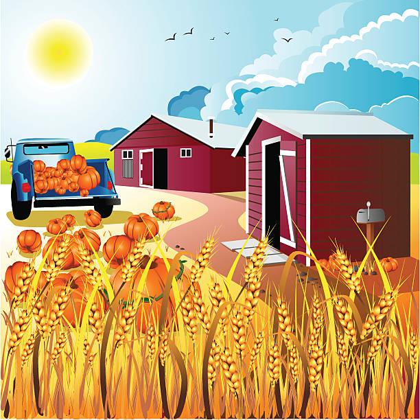 harvest tag - herbstgemüseanbau stock-grafiken, -clipart, -cartoons und -symbole