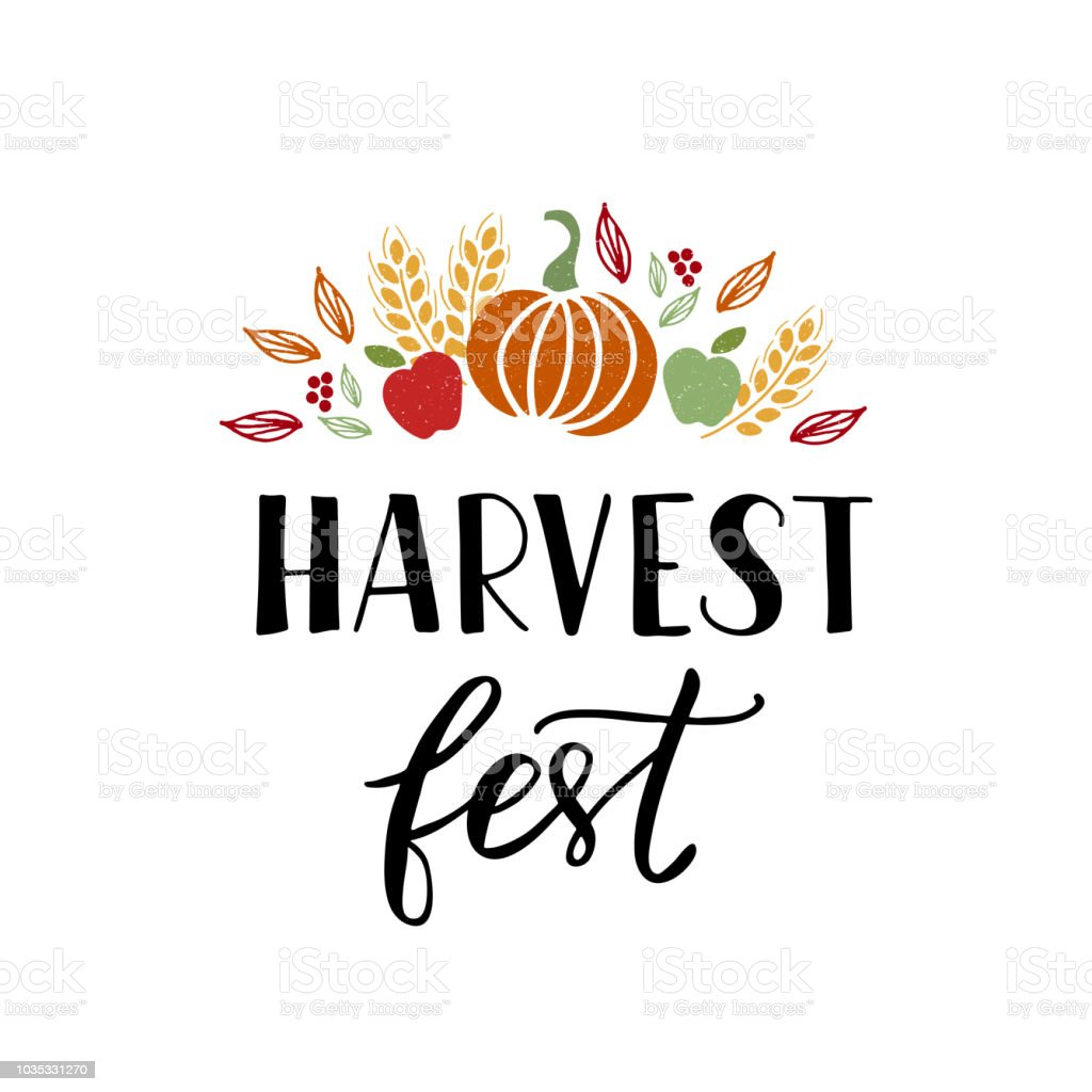 Harvest Fest lettering vector art illustration