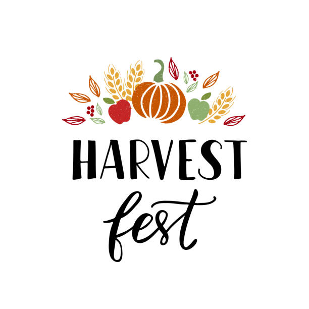 Harvest Fest lettering Harvest fest - hand drawn lettering phrase with autumn harvest symbols. Harvest fest poster design. Vector illustration. Isolated on white background. harvesting stock illustrations