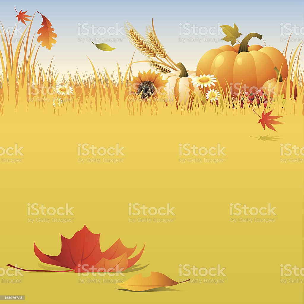Harvest -field royalty-free stock vector art