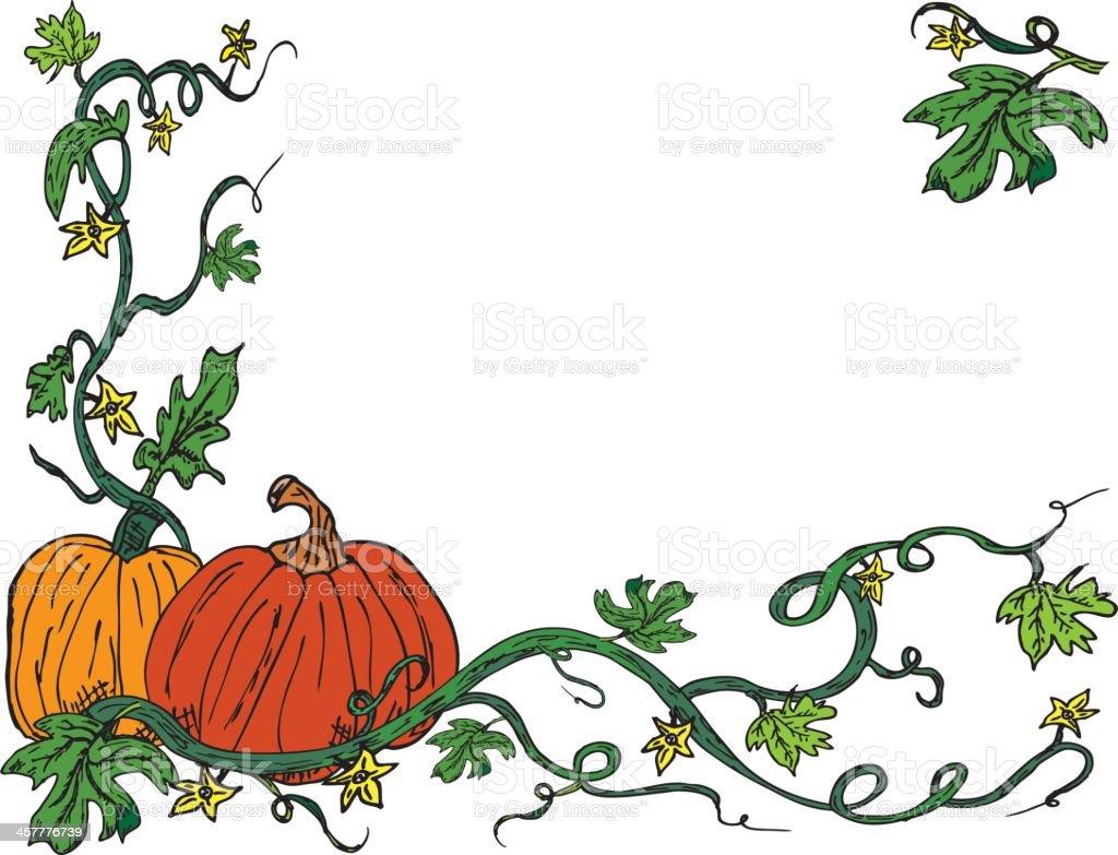 harvest pumpkin vine corner border on white with copy space stock rh istockphoto com Happy Birthday Clip Art Autumn Acorn Clip Art