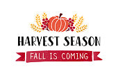 Harvest Season- hand drawn lettering phrase with harvest symbols. Harvest fest poster design. Autumn festival invitation. Fall party template. For postcard or invitation card, banner. Vector illustration.
