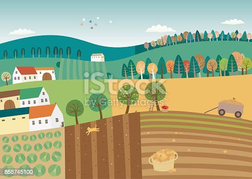 Vector ilustration of agriculture landscape