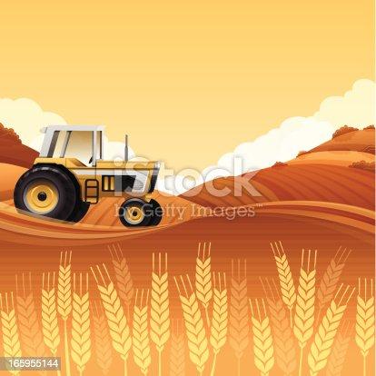 istock Harvest Tractor 165955144