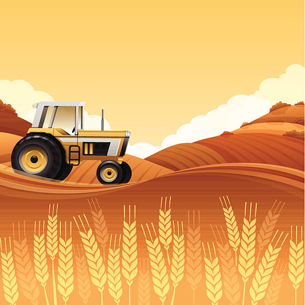Harvest Tractor Harvest tractor background with copy space. harvesting stock illustrations