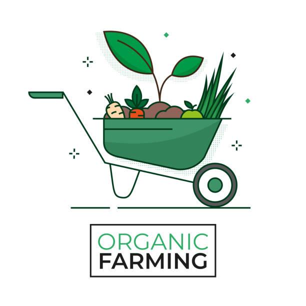 ilustrações de stock, clip art, desenhos animados e ícones de harvesting food organic icon - wheelbarrow - organic farming - editable stroke - picking fruit