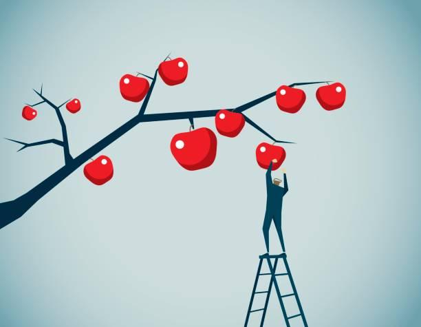 illustrazioni stock, clip art, cartoni animati e icone di tendenza di harvesting - raccogliere frutta