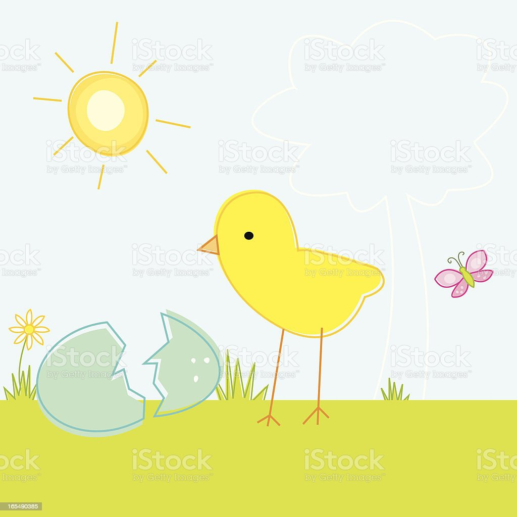 Hatched Chick Scene royalty-free stock vector art