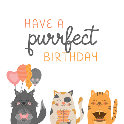 Have a purrfect birthday cat greeting card