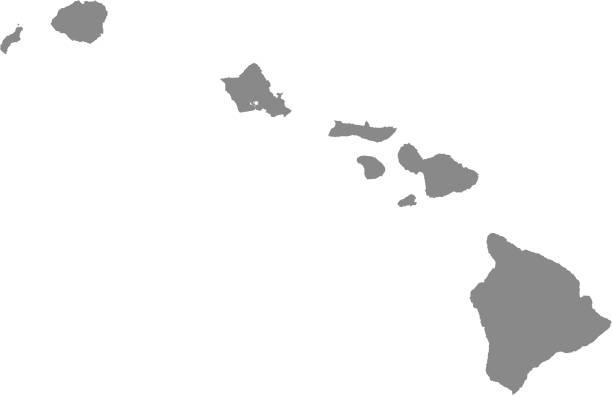 bildbanksillustrationer, clip art samt tecknat material och ikoner med hawaii county karta vektor konturen illustration grå bakgrund. hawaii statligt av usa county karta. county karta av hawaii statligt av förenta staterna - delstat hawaii