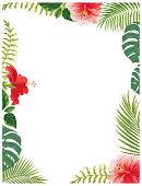 istock Hawaii flowers and plants 1155942305