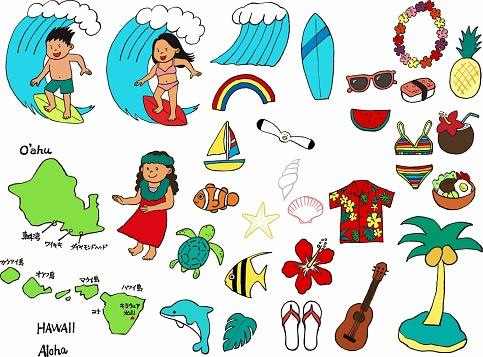 Hawaii icon set