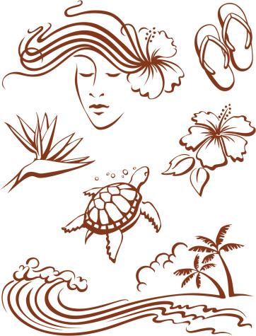 Hawaii Icons