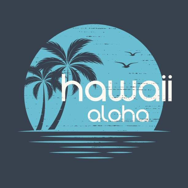 hawaii sunset. t-shirt and apparel vector design, print, typography, poster, emblem with palm trees. - beach fashion stock illustrations, clip art, cartoons, & icons