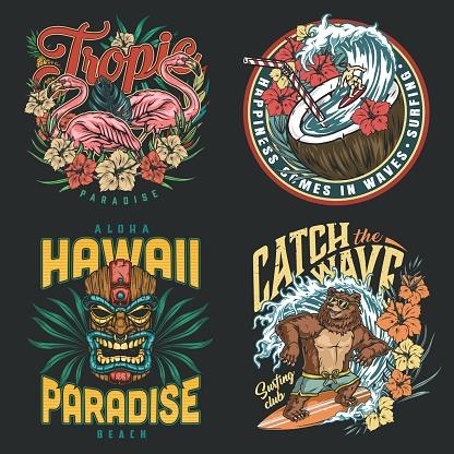 Hawaii surfing vintage colorful prints
