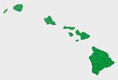 Hawaii US State Map Green Hexagon Pattern