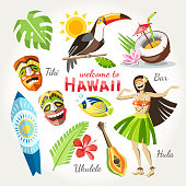 hawaii vector collection of traditional objects set with bird toucan girl dan?ing hula tiki mask ukulele surf and tropical leaves and flowers cocktail and fish