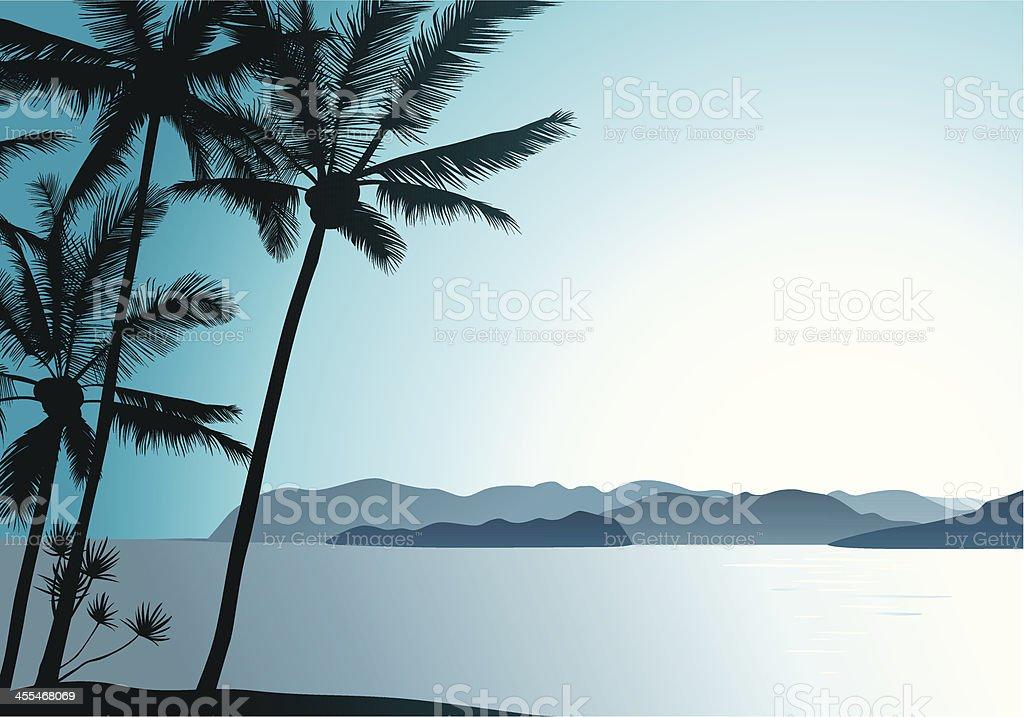 Hawaiian Air vector art illustration
