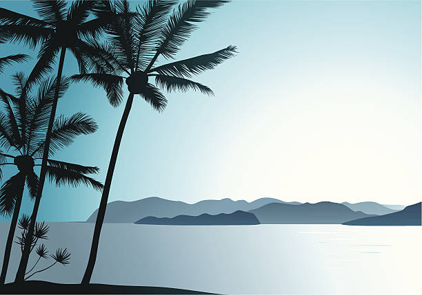 Hawaiian Air Beautiful tropical island landscape with palm trees. big island hawaii islands stock illustrations