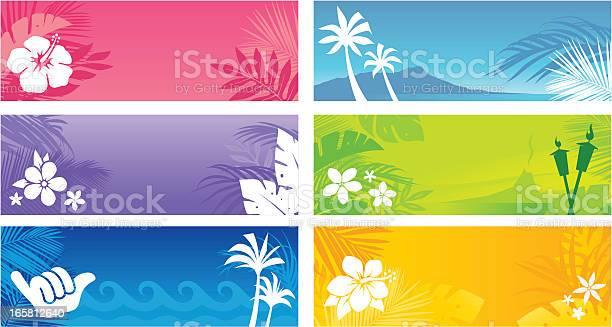 Hawaiian banners vector id165812640?b=1&k=6&m=165812640&s=612x612&h=ywlr8koxn0sivihcpjtplgyeoi9ste88kmkjqvvhwpi=