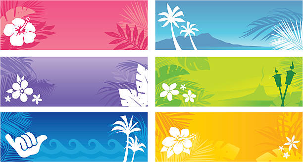 Hawaiian Banners Tropical banners with an island theme. Professional clip art for your print project or Web site. big island hawaii islands stock illustrations