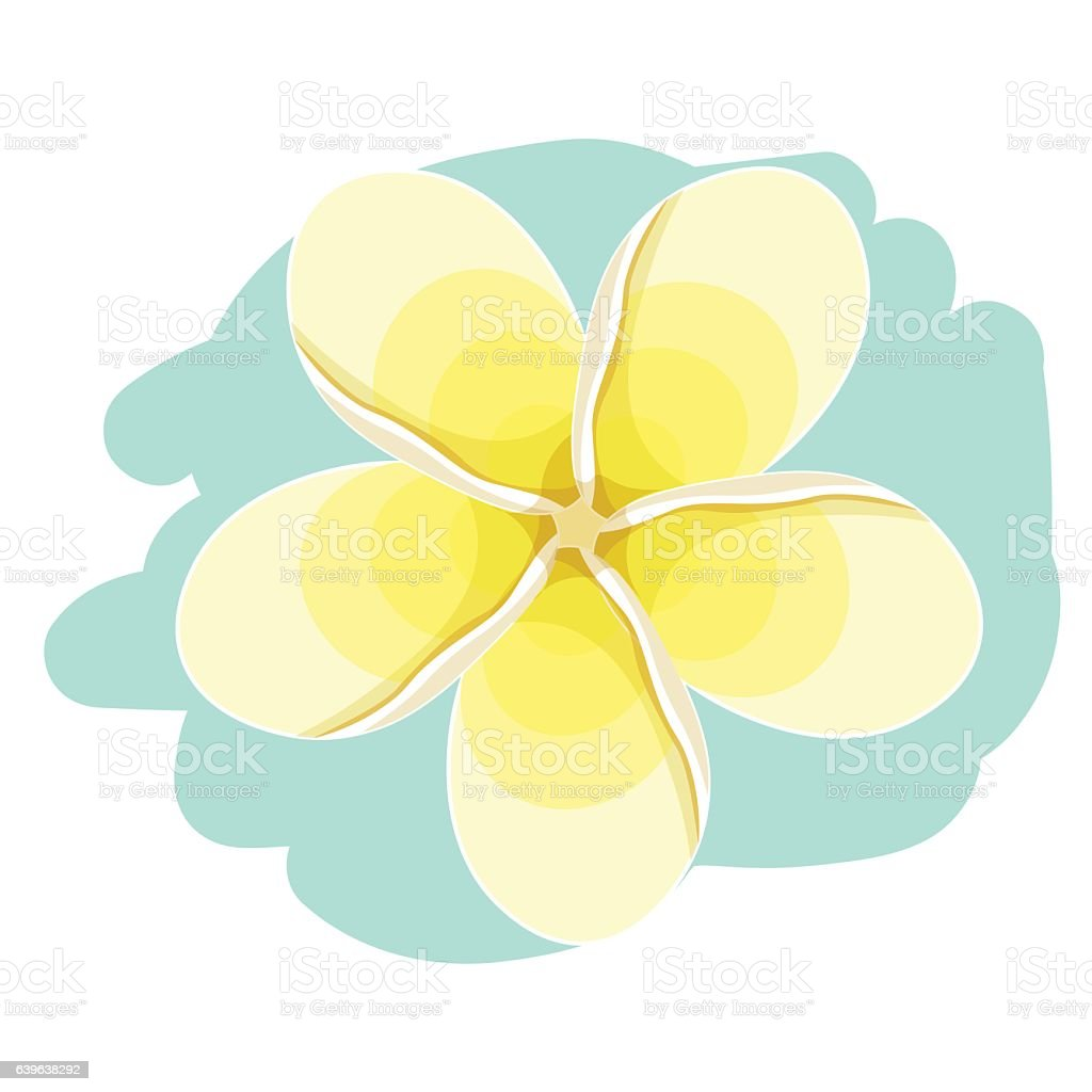 Hawaiian plumeria flower an exotic vector illustration stock vector hawaiian plumeria flower an exotic vector illustration royalty free hawaiian plumeria flower an exotic izmirmasajfo Choice Image