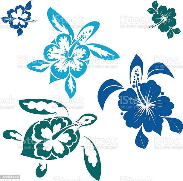 Hawaiin turtles vector id538930663?b=1&k=6&m=538930663&s=612x612&h=cdlvj88dw74v nqy1erpxblmu6yjlnh7mavkmnjk1fe=