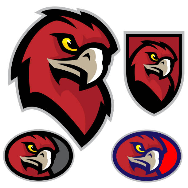 Hawk Head Mascot A sporty hawk mascot head, great for any sport or team based design. mascot stock illustrations