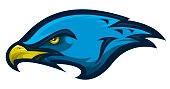 A mascot style graphic of a hawk head. Can easily be simplified to a striking one-color graphic.