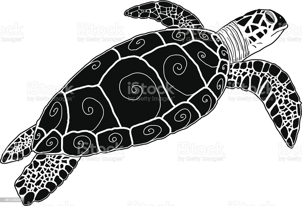 royalty free sea turtle clip art vector images illustrations istock rh istockphoto com sea turtle clip art free sea turtle clipart images