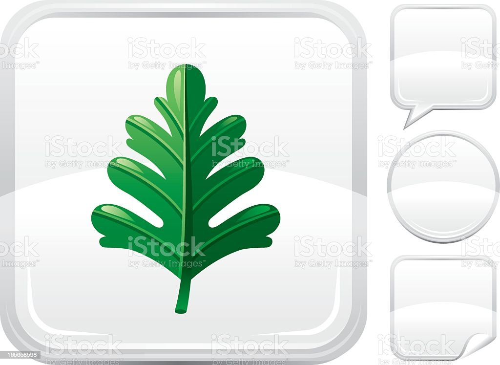 Hawthorn leaf icon on silver button royalty-free stock vector art
