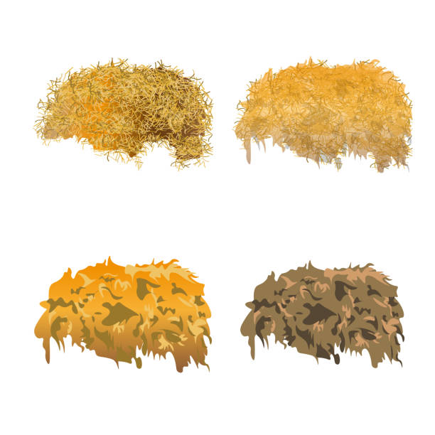 Hay pile set. Hay pile set. Vector illustration isolated on a white background hay stock illustrations