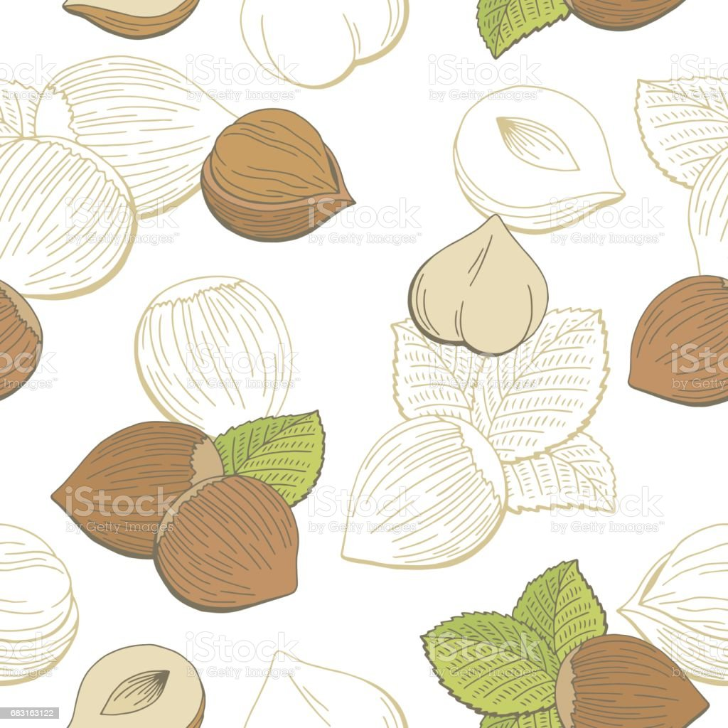 Hazelnut graphic color seamless pattern sketch illustration vector 免版稅 hazelnut graphic color seamless pattern sketch illustration vector 向量插圖及更多 一片 圖片