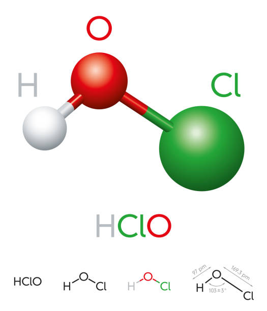 HClO Hypochlorous acid molecule model and chemical formula HClO. Hypochlorous acid. Molecule model, chemical formula, ball-and-stick model, geometric structure and structural formula. Weak acid and disinfection agent. Illustration on white background. Vector. acid stock illustrations