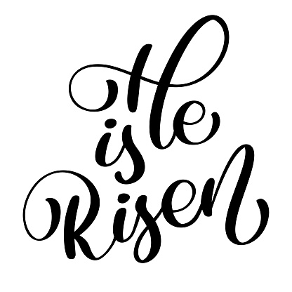 He is Risen text on white background. Calligraphy lettering Vector illustration. For christian presentation on card, romantic quote for design greeting cards, T-shirt, mug, holiday invitations