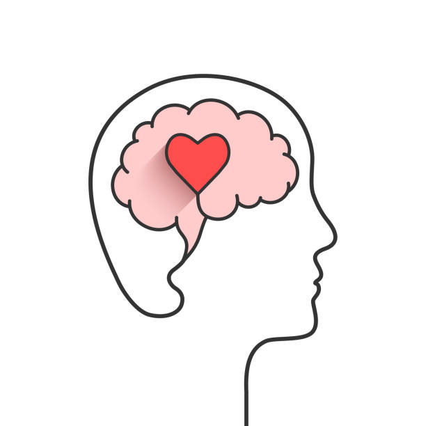 Head and brain silhouette with heart shape Head and brain silhouette with heart shape as love, mental health or emotional intelligence concept love emotion stock illustrations