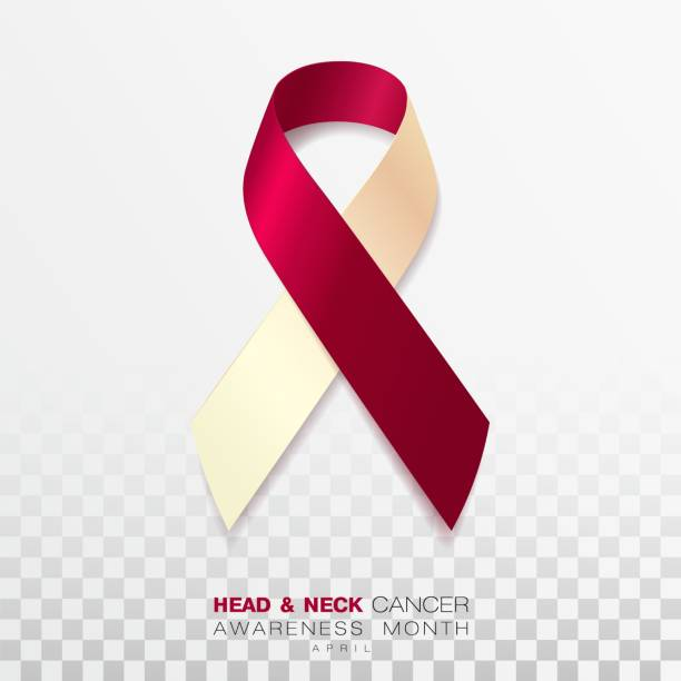 Head and Neck Cancer Awareness Month. Burgundy and Ivory Color Ribbon Isolated On Transparent Background. Vector Design Template For Poster. Head and Neck Cancer Awareness Month. Burgundy and Ivory Color Ribbon Isolated On Transparent Background. Vector Design Template For Poster. Illustration neck stock illustrations