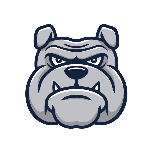 Head angry bulldog mascot Head angry bulldog mascot mascot stock illustrations