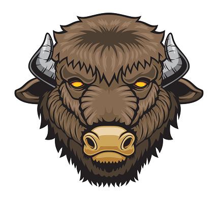 head bison mascot