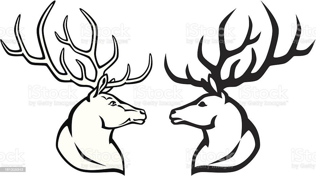 Bonito Diagrama De La Anatomía Elk Patrón - Anatomía de Las ...