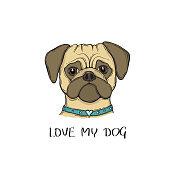 Head Dog pug with the collar, hand-painted portrait. Love my dog slogan.