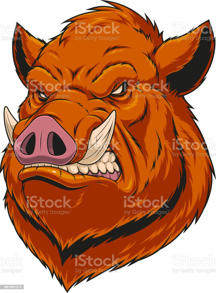 Head ferocious boar vector art illustration