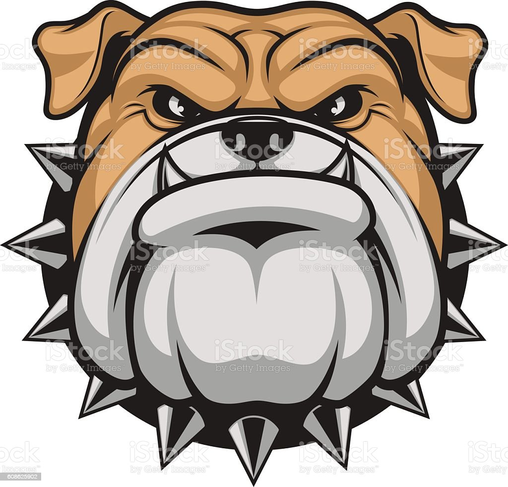 Head ferocious bulldog vector art illustration