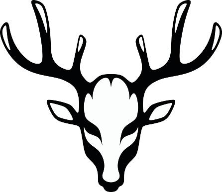 Head of a black deer