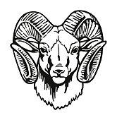 Head of a Ram