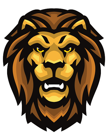 Head of a wild Lion